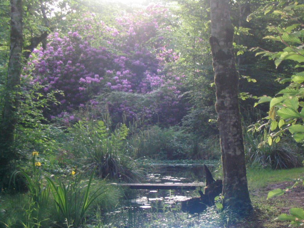 Prise de vue des jardins d'eaux vives