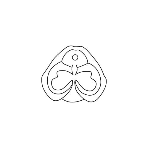Fontaine Papillon 500/650