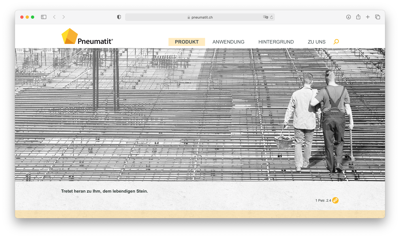 Aperçu du site Internet Pneumatit
