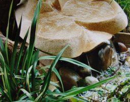 Fontaine d'intérieur Papillon 650 saumon